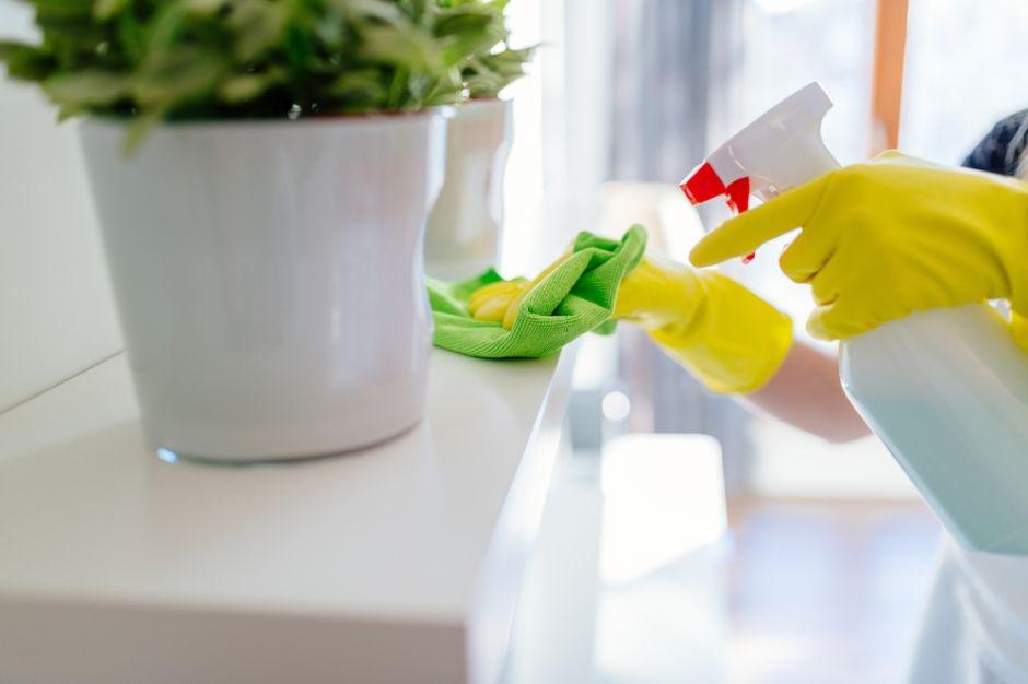 5 Pasos Para Mantener Tu Casita Limpia Y Desinfectada La Opinion