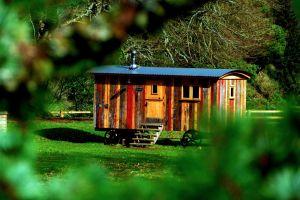 Vive con menos de mil dólares al mes al residir en una Tiny House