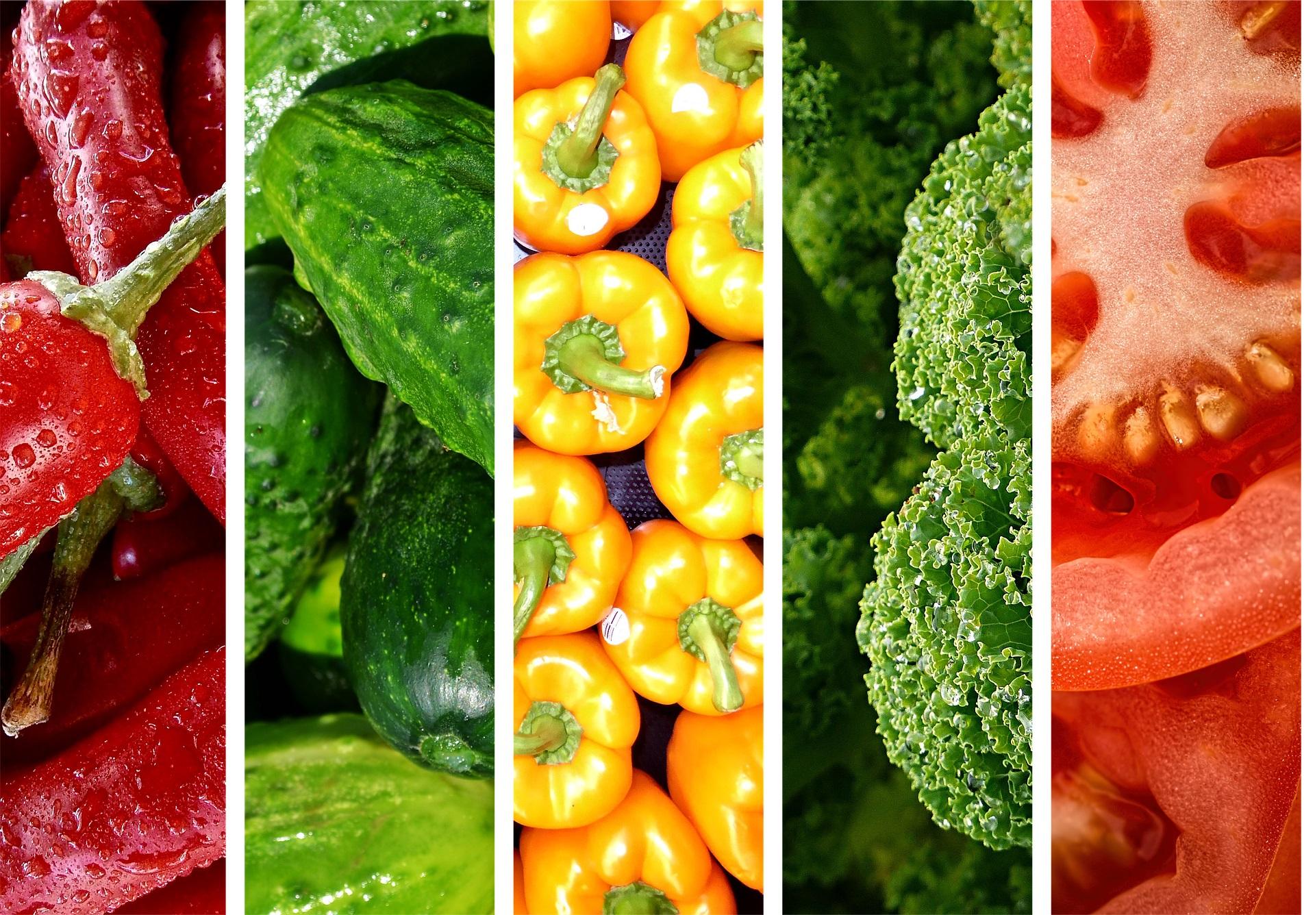 cuales son los vegetales sin carbohidratos