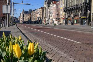 """Coronavirus: por qué el """"confinamiento inteligente"""" de Países Bajos puede ser una estrategia de alto riesgo"""