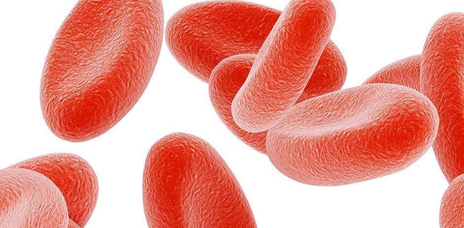 ¿Para qué sirven los suplementos que estimulan la producción de glóbulos rojos?