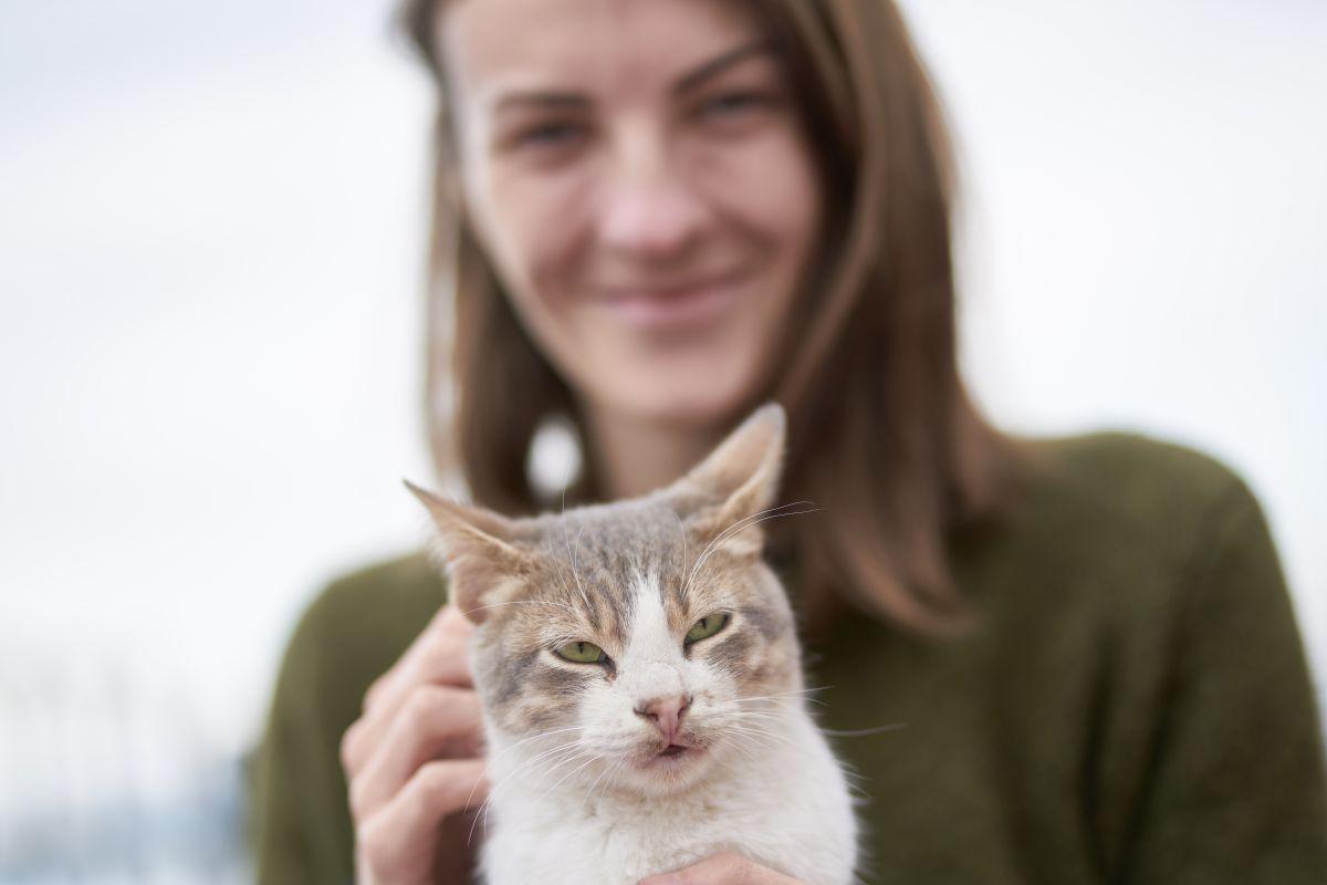 Un gato puede portarse mal porque extraña a su amo.