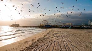 Reabrirán el popular Muelle de Santa Mónica tras 3 meses de cierre por la pandemia