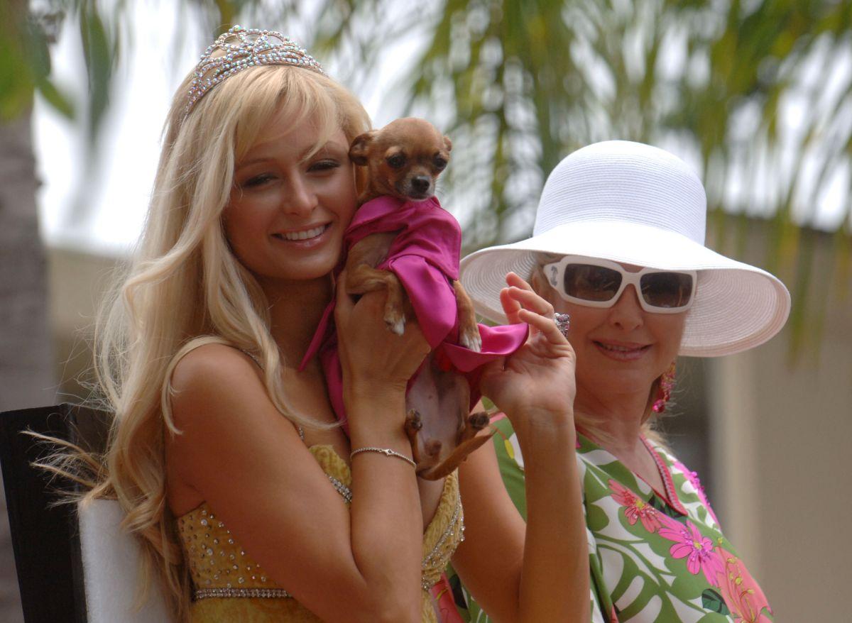 La lujosa vida de las mascotas de Paris Hilton
