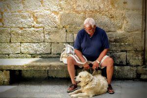 Los motivos por los que los perros son benéficos para adultos mayores