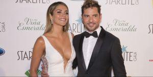 David Bisbal y Rosanna Zanetti revelan el sexo del bebé que están esperando