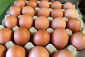 FDA autoriza que huevos empacados para el servicio de alimentos se vendan en tiendas minoristas