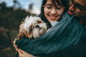 El resfriado en perros: sus síntomas y su prevención