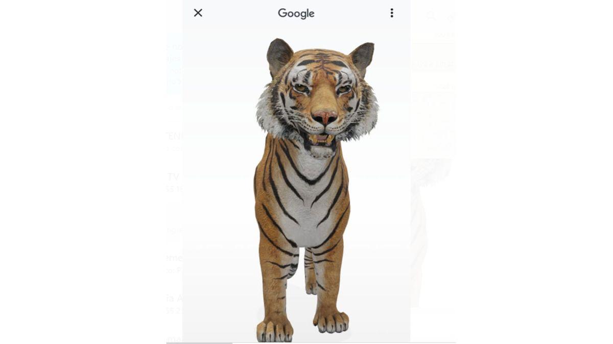 Pasa la cuarentena con un oso o tigre en casa gracias a Google