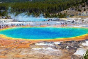 El descubrimiento en los manantiales termales de Yellowstone que fue clave para hacer los tests del COVID-19