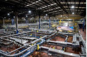 Producción de cerveza en Ciudad de México reinicia en junio
