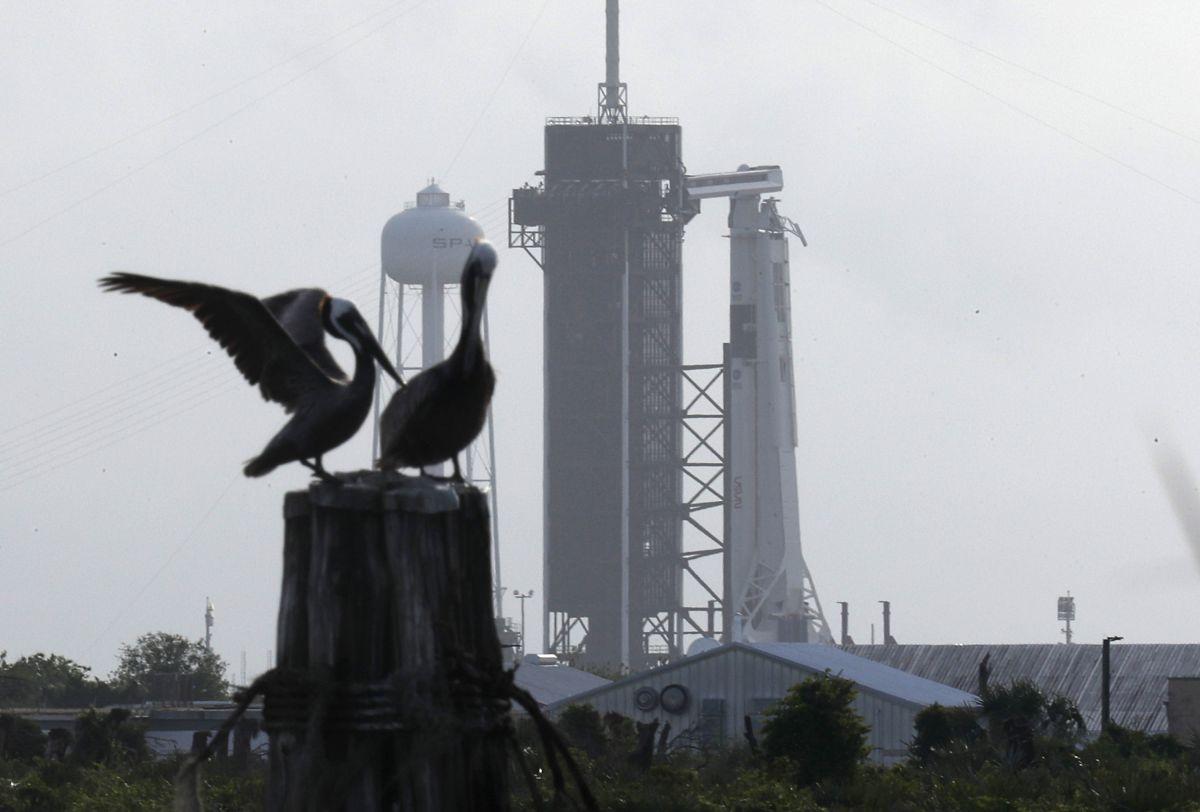 El desarrollo de SpaceX le costó a la NASA cerca de $1,700 millones de dólares.