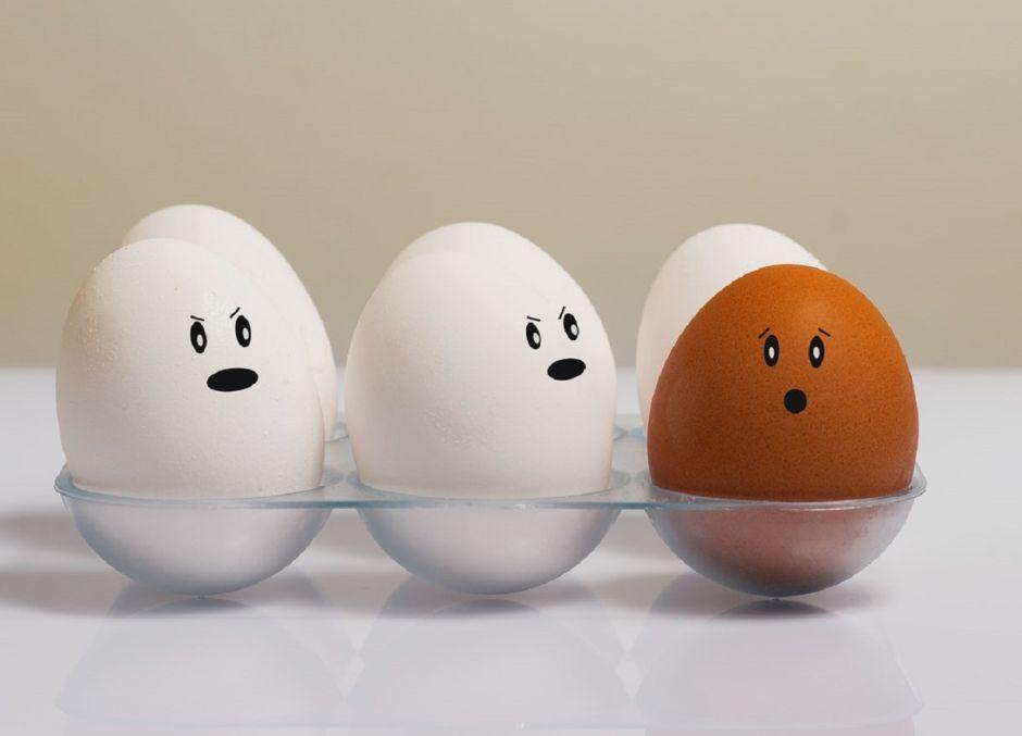 ¿El huevo con cascarón marrón es más nutritivo que el blanco?