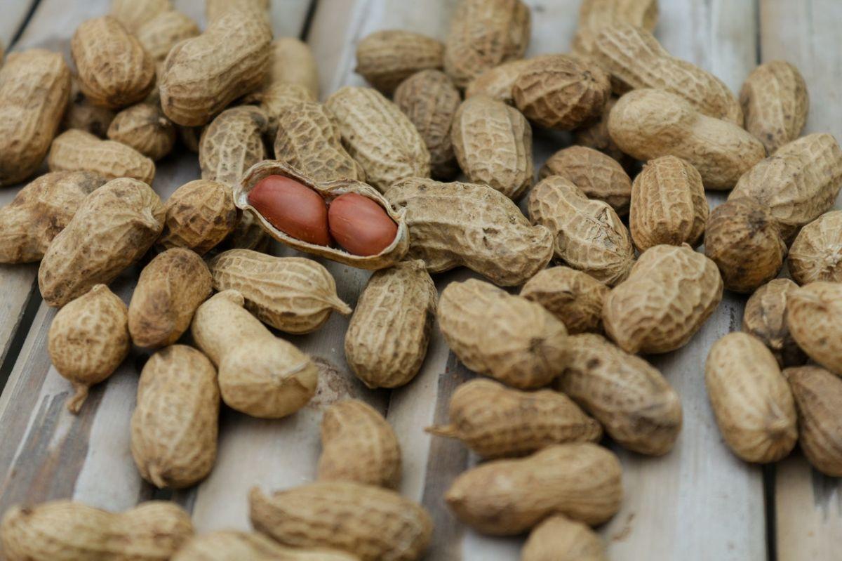 Por qué consumir cacahuate a diario