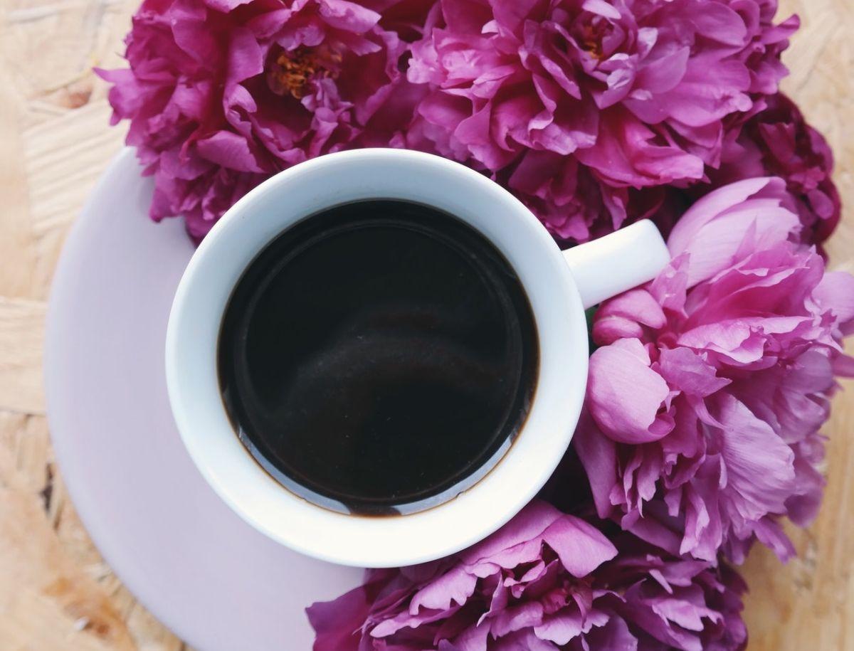 Una taza de café sencillo tiene menos de 5 calorías y no contiene grasa.