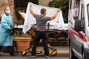 Estados Unidos ya está en el umbral de los 25 millones de casos de COVID-19 registrados