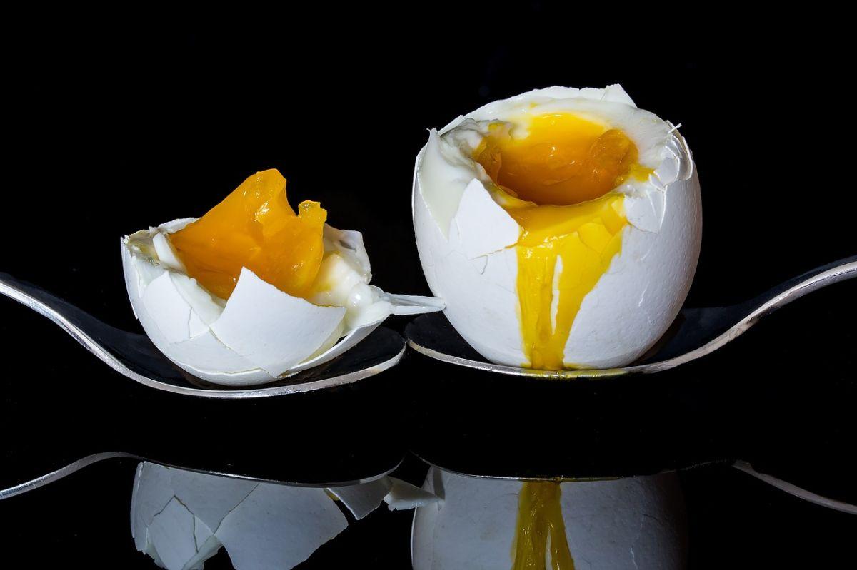 A medida que los huevos envejecen el agua en su interior se evapora a través de los poros de la cáscara y pierden peso.