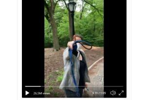 """Reacciones contra """"racista"""" de Central Park reabren debate y confirman estrés de Nueva York por la pandemia"""