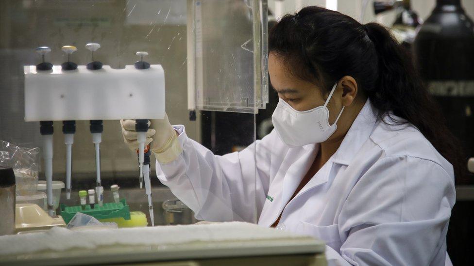 Científicos y especialistas trabajan en lograr una vacuna contra el COVID-19.