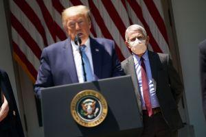 Fauci, mayor experto del país en enfermedades infecciosas, no habla con Trump desde hace 2 semanas