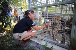 Cuatro empleados del Zoo de Miami dan positivo en la prueba de coronavirus