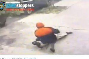 VIDEO: Arrastran a anciano y le rompen una rodilla durante robo en El Bronx