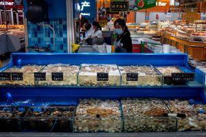 ¿Qué relación existe entre el consumo de salmón y el coronavirus?