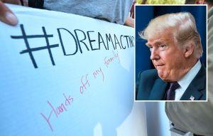 """Trump afirma que algo """"muy bueno"""" sucedera con DACA y 'dreamers'"""