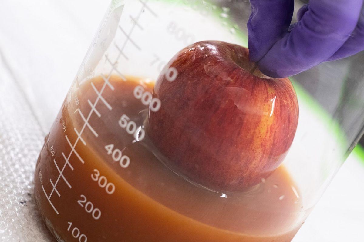 Recubren con huevo frutas y verduras para mantenerlos frescos por más tiempo
