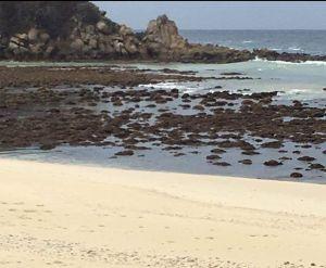 VIDEOS: Se aleja el mar en las costas de Huatulco, Oaxaca; reportan un muerto por sismo