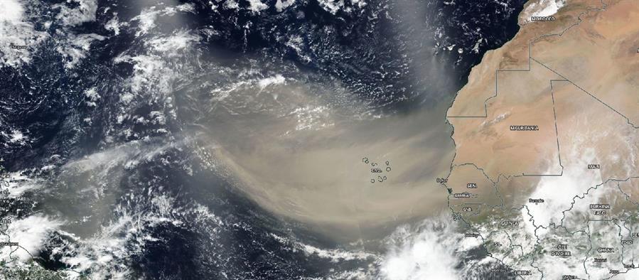 Llega polvo del Sahara a México, alertan por daños a la salud