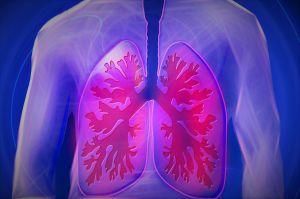 ¿Fumador?, alimentos que te ayudan a desinflamar tus pulmones