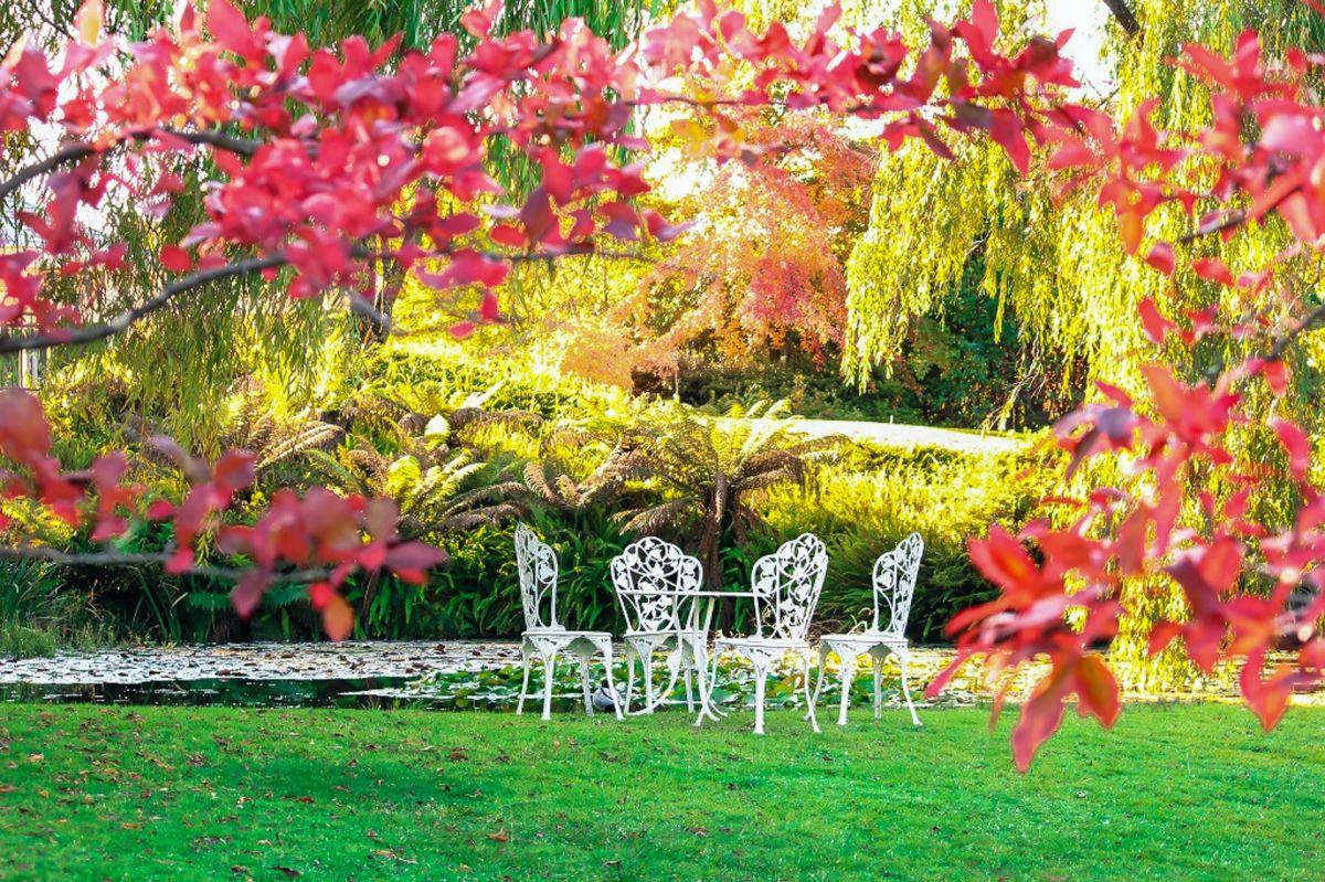 8 productos para disfrutar de tu jardín o terraza este verano