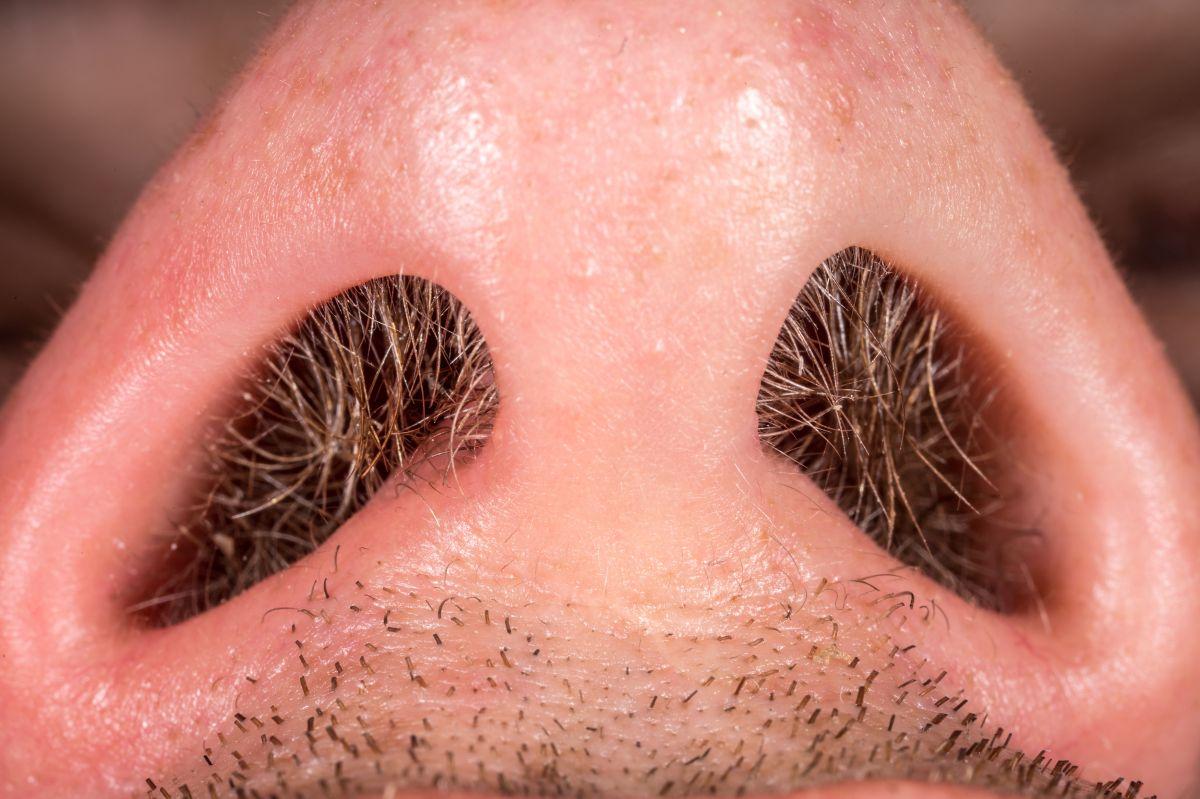 Los mejores productos para eliminar el exceso de vellos en tu nariz fácil, rápido y sin dolor