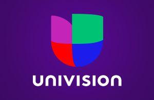 Periodistas de Univision agredidos con balas de goma por la policía