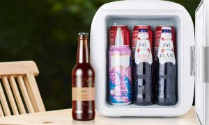 Los 5 mejores mini refrigeradores portátiles