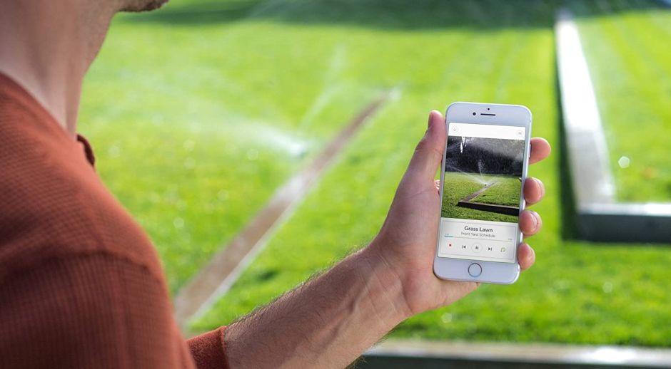 ¿Cuál es el mejor sistema de riego automático para tu jardín?
