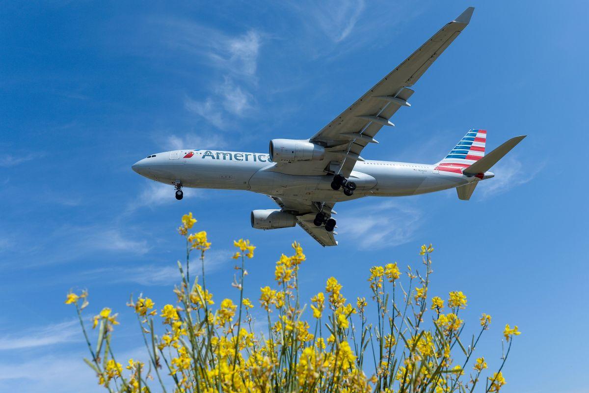 American Airlines no aceptará más a una pasajera que atacó a una asistente de vuelo