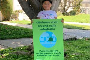 Planean plantar 90,000 árboles gratuitos en Los Ángeles, familias y comerciantes pueden solicitar uno
