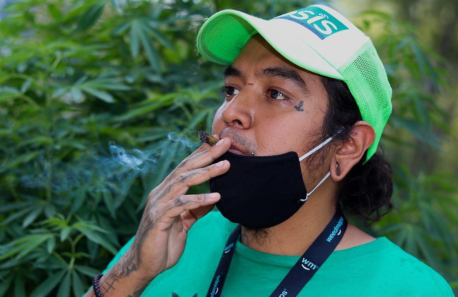 Activistas exigen a Senado de México avances en legalización del cannabis