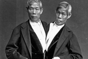 Mueren en EE.UU. los siameses más viejos de la historia