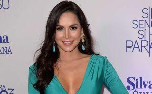 """""""¡Ay, Dios Mío!"""": Carmen Villalobos baila el éxito de Karol K en el baño usando una bata de seda"""