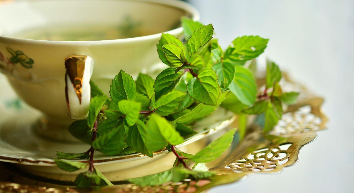 El té de menta es un extraordinario remedio nocturno para combatir el insomnio y controlar los niveles de estrés.