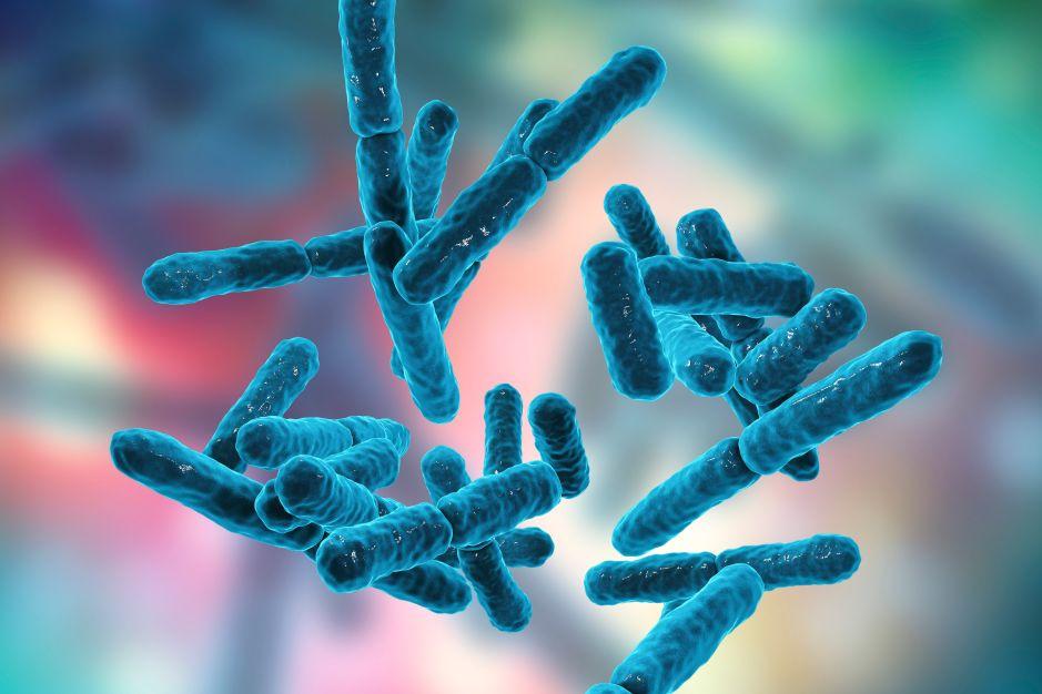 Probióticos: ¿Para qué sirven y cómo benefician la salud?