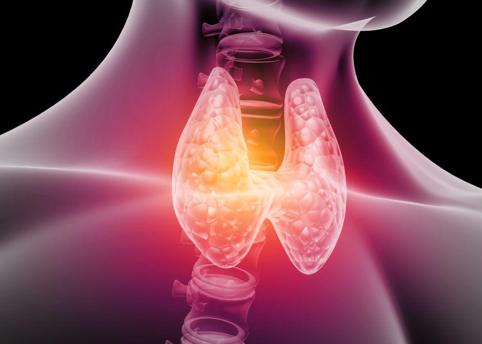 ¿Tienes problemas de tiroides? 3 suplementos para controlarla