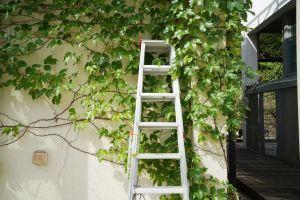 Las mejores escaleras plegables que te ayudarán en todas las tareas del hogar