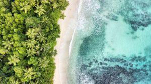 El país que logró canjear parte de su deuda externa por proyectos para proteger los océanos