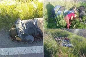 FOTOS: Sicarios matan a 7 y tiran los cuerpos cerca de una carretera