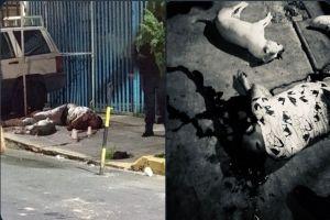 FOTOS: Sicarios matan a menor, un señor y hasta un perro, así los dejaron tras balearlos