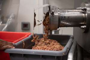 Despiden a 30 hispanos de una planta de carne por reclamar protección contra coronavirus